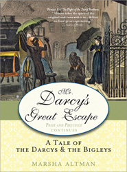 Mr. Darcy's Great Escape book cover